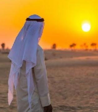 卡塔尔政府大力发展电商 预计到2020年规模达32亿美元