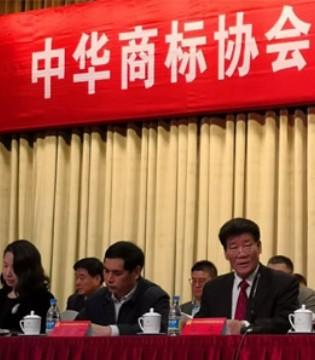 啄木鸟品牌七好集团连任当选中华商标协会第四届理事会副会长