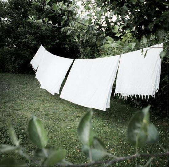 新申亚麻大师 洗涤亚麻 只能用专用洗衣液吗?