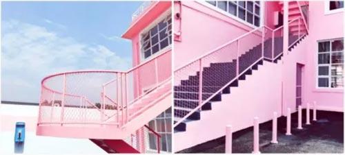 怡兰芬品牌内衣 初夏 到粉红花房里打个瞌睡~