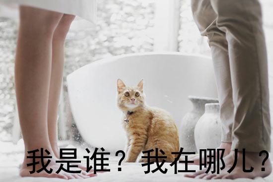 春节过年回家 我嗨嗨嗨嗨嗨了一路