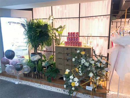 安所品牌女装贵州铜仁蓝波湾购物广场店正式开启