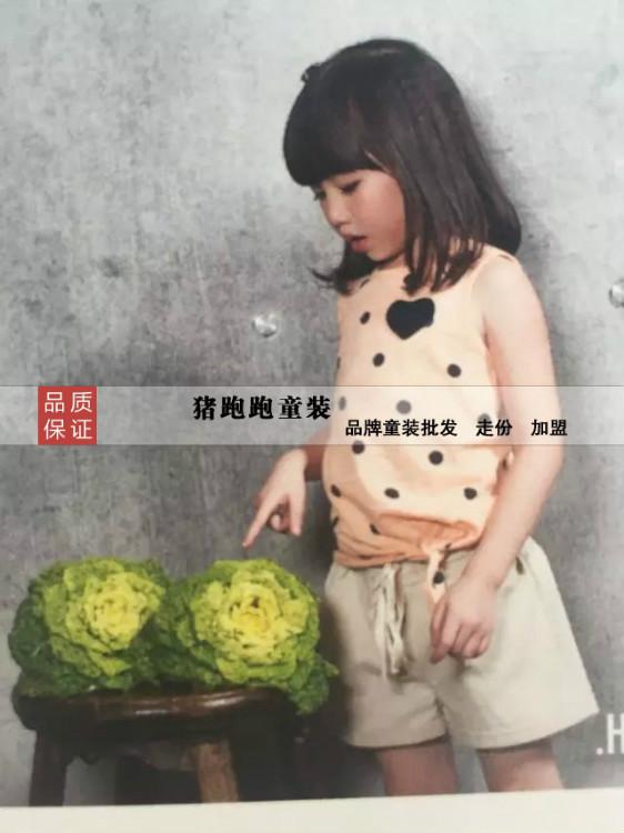 哈罗.俏的童装2016春季新品