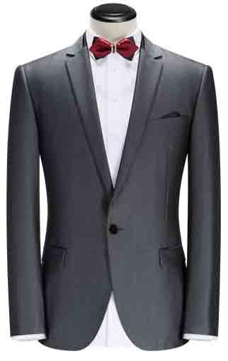 卡尔·高斯灰色礼服