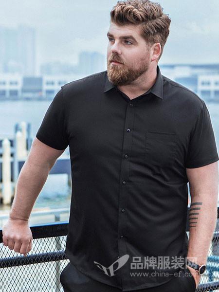 大依优型男装2018夏季商务衬衫