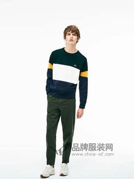 Lacoste休闲品牌2019春季简约拼色休闲圆领棉质长袖毛衫