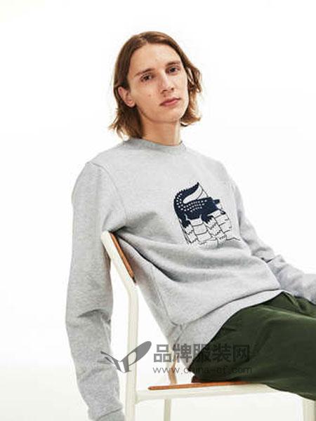 Lacoste休闲品牌2019春季圆领套头抓绒运动衫