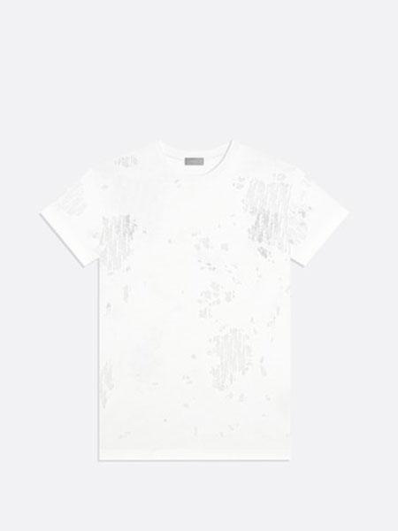 Dior Homme迪奥·桀傲男装品牌2019春夏新款韩版时尚休闲圆领短袖T恤