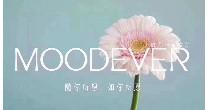MOODEVER
