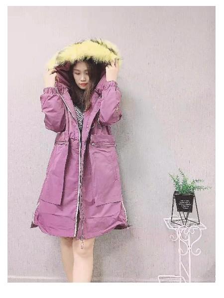 广州雪莱尔女装品牌2019秋冬新品