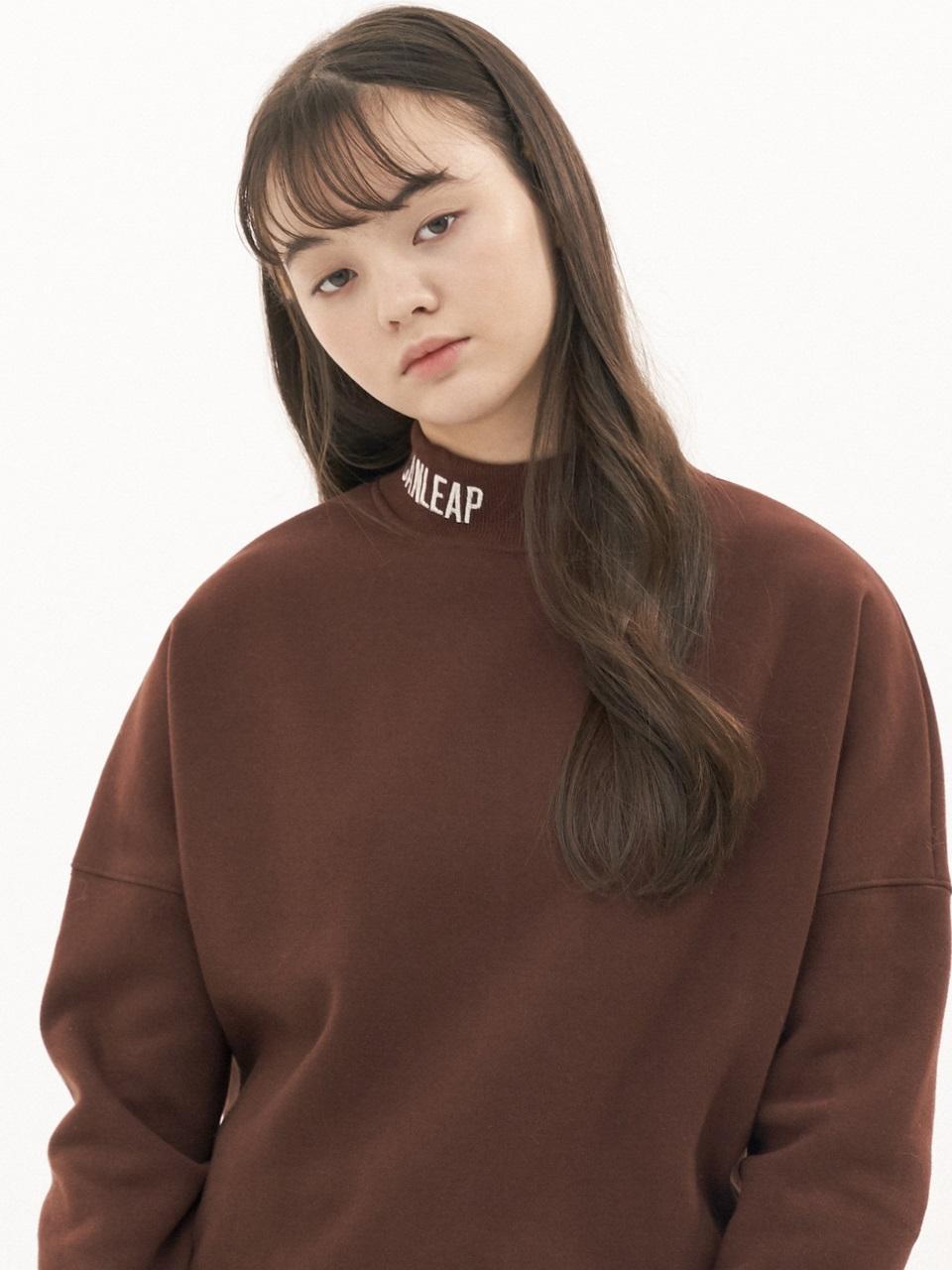 CANLEAP国际品牌品牌2020春夏宽松落肩LOGO字母刺绣高领女士拉绒卫衣_棕色