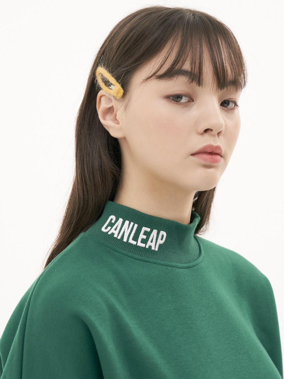 CANLEAP国际品牌品牌2020春夏宽松落肩LOGO字母刺绣高领女士拉绒卫衣_绿色