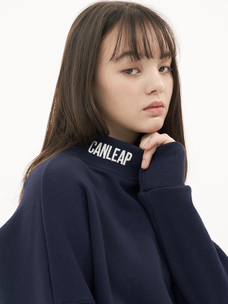 CANLEAP国际品牌品牌2020春夏宽松落肩LOGO字母刺绣高领女士拉绒卫衣_深灰色