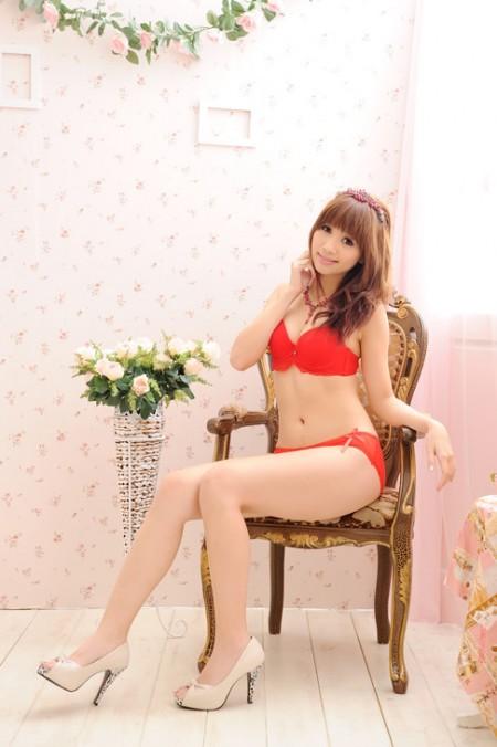 魅力新丽人内衣品牌2019秋冬新款纯色蕾丝花纹内衣