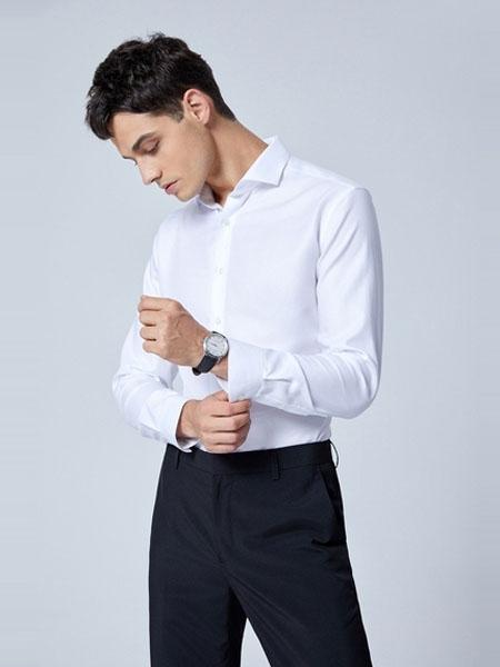 G2000男装品牌2020春夏新款透气免烫全棉修身商务衬衣衬衫男长袖