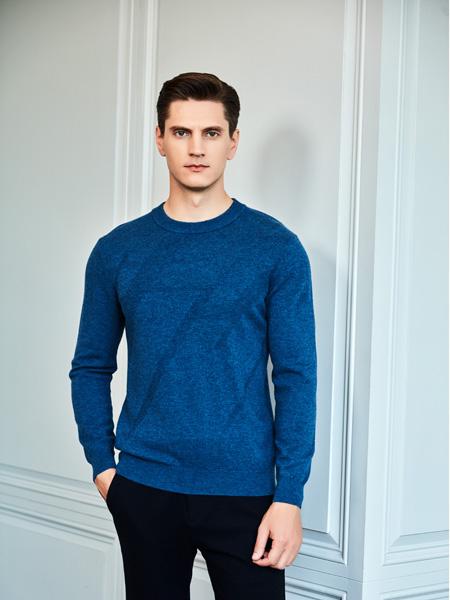 爱迪丹顿男他修��装品牌2020秋冬竟然硬生生蓝色时尚上衣