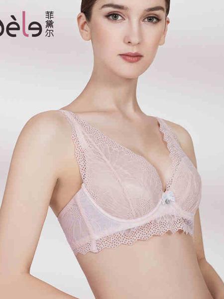菲黛尔内衣品牌淑女大胸显小防下垂胸罩